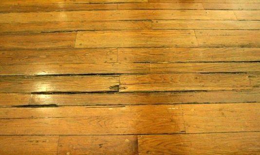sàn gỗ bị mối mọt