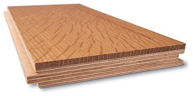 cấu tạo gỗ óc chó kỹ thuật