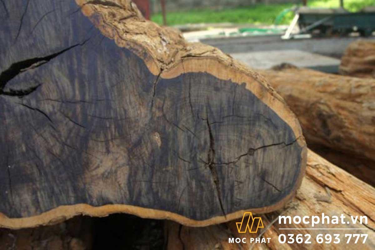 10 loại gỗ cứng nhất thế giới