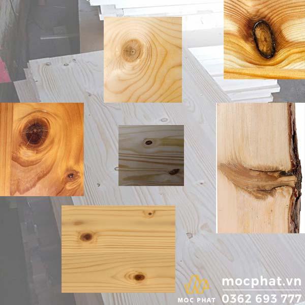 mắt gỗ thông
