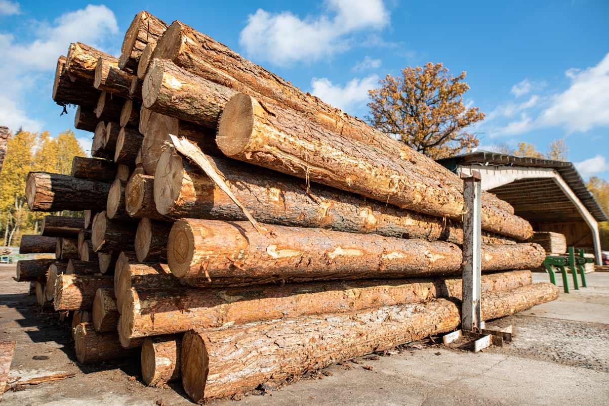 Hình ảnh gỗ nguyên khối